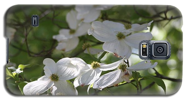Dogwood Blossoms 3 Galaxy S5 Case