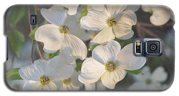 Dogwood Blossoms Galaxy S5 Case