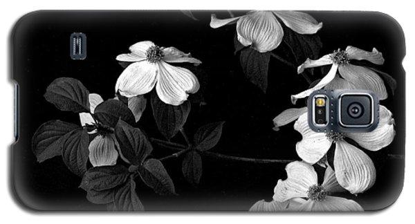 Dogwood Galaxy S5 Case