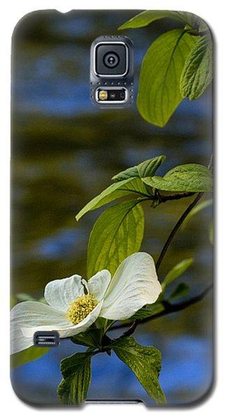 Dogwood On The Merced Galaxy S5 Case