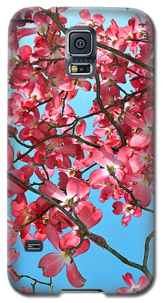 Dogwood Tree Flowers And Blue Sky Galaxy S5 Case