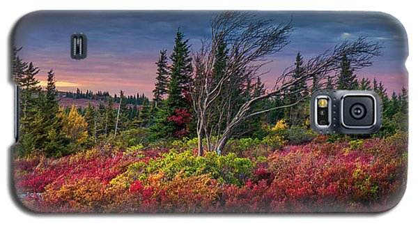 Dolly Sods Windswept Sunset Galaxy S5 Case