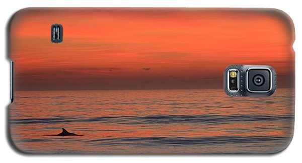 Galaxy S5 Case featuring the photograph Dolphin At Cape Hatteras by Mountains to the Sea Photo