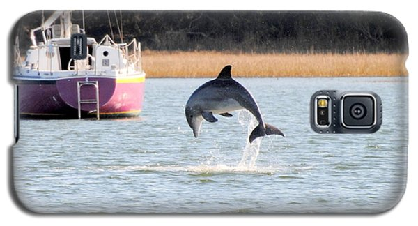 Dolphin Jumping In Taylors Creek Galaxy S5 Case