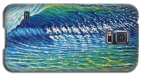 Dolphin Surf Galaxy S5 Case