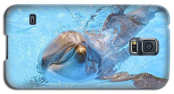Dolphin Swimming Galaxy S5 Case