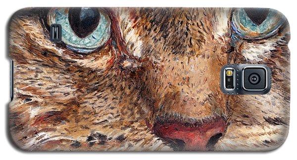 Domestic Tabby Cat Galaxy S5 Case
