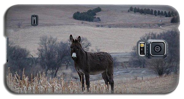 Donkey  Galaxy S5 Case by Yumi Johnson