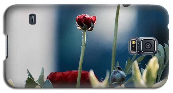 Galaxy S5 Case featuring the photograph Don't Be Ranunculus by Penni D'Aulerio