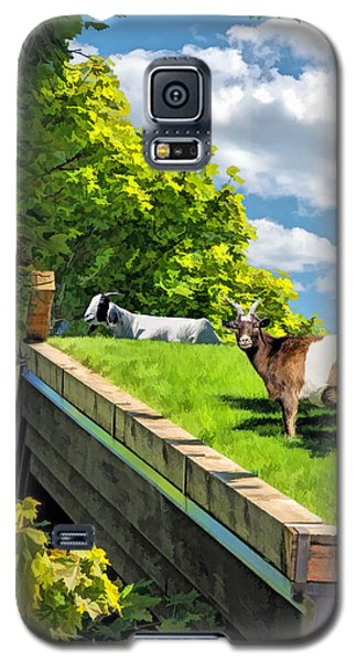 Door County Al Johnsons Swedish Restaurant Goats Galaxy S5 Case by Christopher Arndt