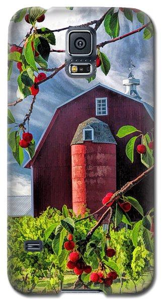 Door County Cherry Harvest Red Barn Galaxy S5 Case