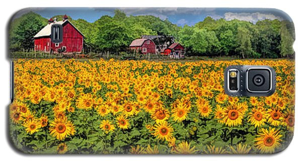 Door County Field Of Sunflowers Panorama Galaxy S5 Case