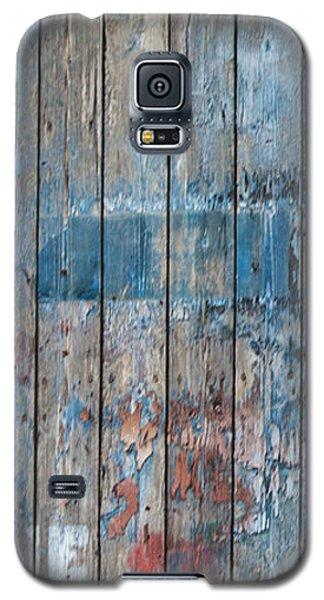 Door Study IIi Galaxy S5 Case