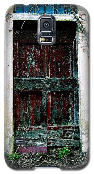 Doorway 49 Galaxy S5 Case