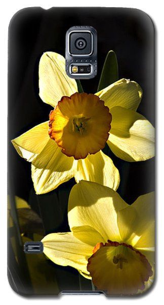 Galaxy S5 Case featuring the photograph Dos Daffs by Joe Schofield