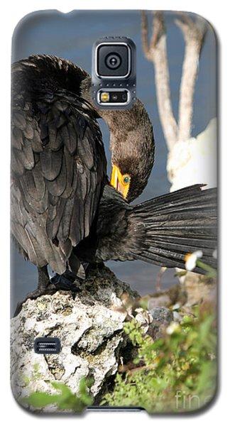 Cormorant Preens Galaxy S5 Case by Martha Marks