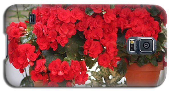 Galaxy S5 Case featuring the photograph Double Red Begonias by Mary Lou Chmura