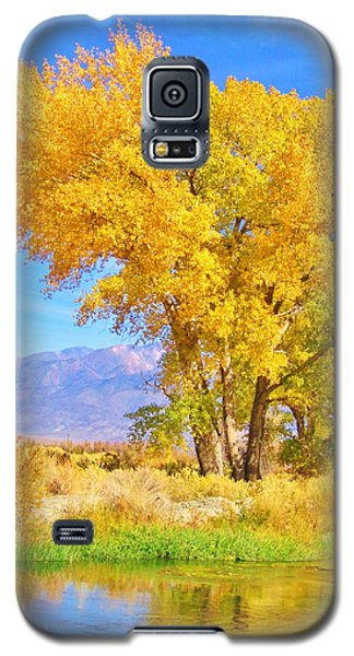 Double Take Galaxy S5 Case by Marilyn Diaz