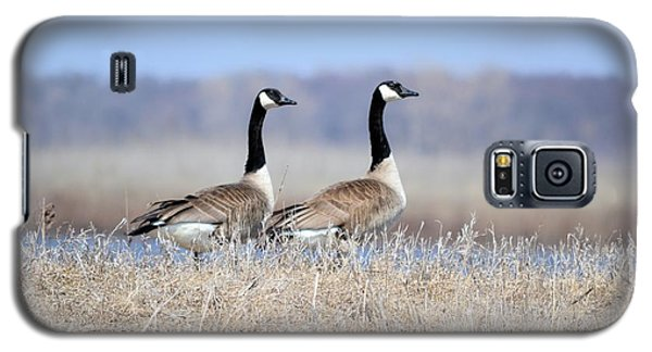 Double Vision Galaxy S5 Case by Bonfire Photography