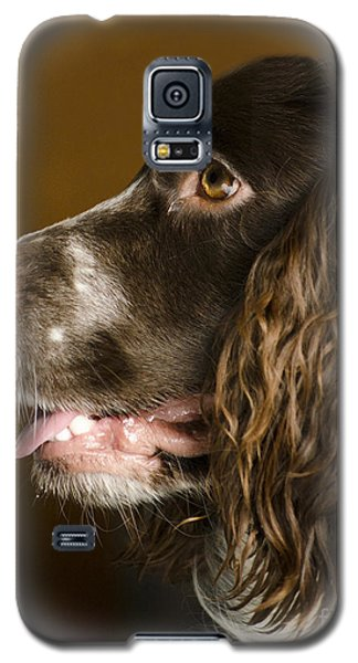 Dougie The Cocker Spaniel 2 Galaxy S5 Case