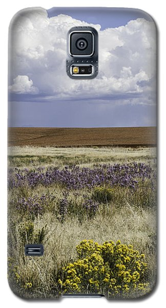 Dove Creek Fall Flowers Galaxy S5 Case