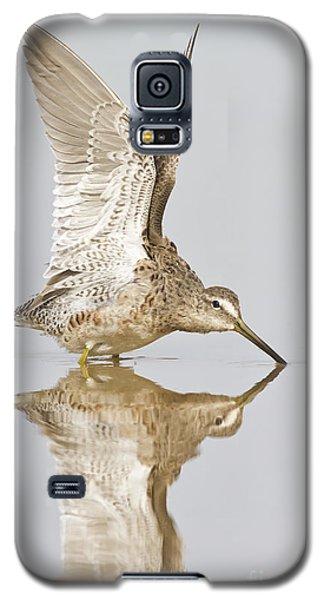 Dowitcher Wing Stretch Galaxy S5 Case by Bryan Keil