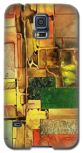 Down The Garden Path Galaxy S5 Case by Pat Purdy