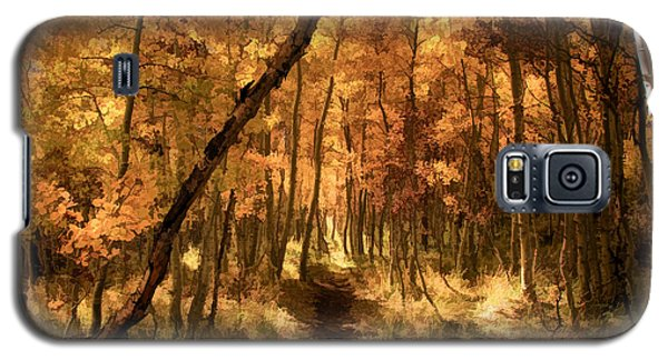 Down The Golden Path Galaxy S5 Case by Donna Kennedy