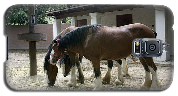 Galaxy S5 Case featuring the photograph Draft Horses by Lynn Palmer