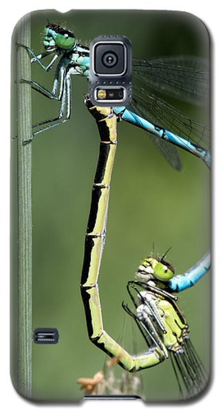 Galaxy S5 Case featuring the photograph Dragon Fly by Leif Sohlman