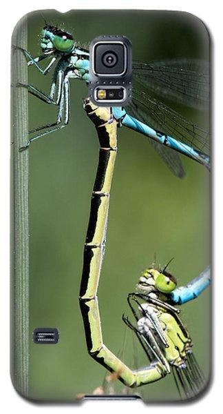 Dragon Fly Galaxy S5 Case by Leif Sohlman