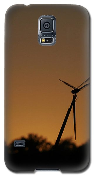 Dragon Fly Silhouette Galaxy S5 Case