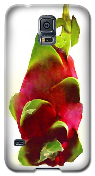 Galaxy S5 Case featuring the photograph Dragon Fruit Aka Pitaya by Merton Allen