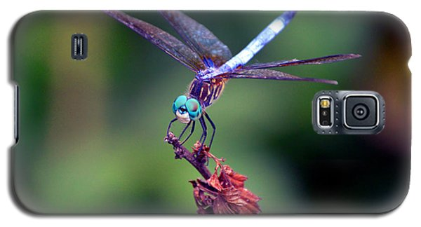 Dragonfly 2 Galaxy S5 Case