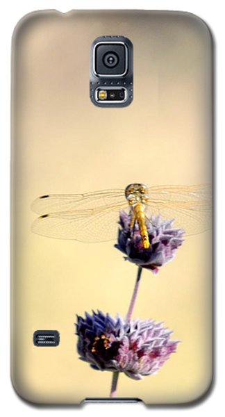 Galaxy S5 Case featuring the photograph Dragonfly by AJ  Schibig