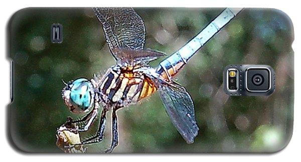 Dragonfly Aqua 2 Galaxy S5 Case by Tamyra Crossley