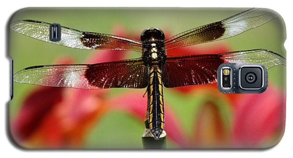 Dragonfly Beauty Galaxy S5 Case