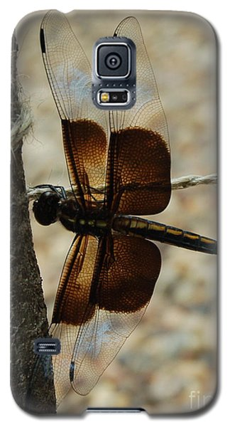 Dragonfly Brown Galaxy S5 Case