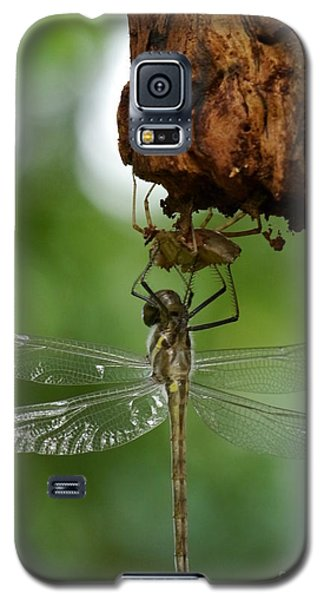Dragonfly Galaxy S5 Case by Jane Ford