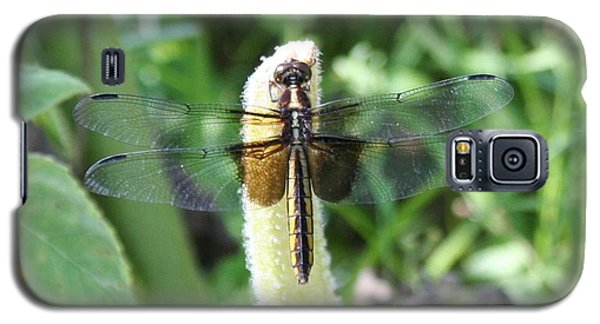 Galaxy S5 Case featuring the photograph Dragonfly by Karen Silvestri