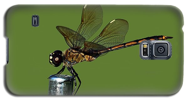 Galaxy S5 Case featuring the photograph Dragonfly by Meg Rousher