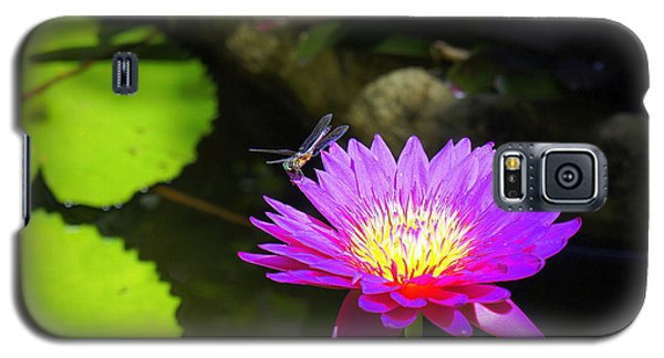 Galaxy S5 Case featuring the photograph Dragonfly Resting by Laurie Perry