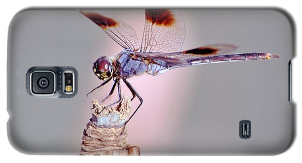Galaxy S5 Case featuring the photograph Dragonfly by Savannah Gibbs