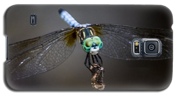 Dragonfly Wings Galaxy S5 Case