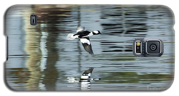 Drake Bufflehead Galaxy S5 Case
