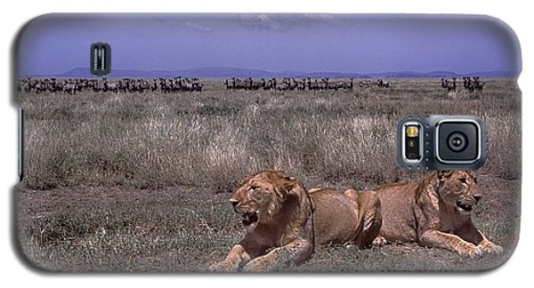 Galaxy S5 Case featuring the photograph Drama On The Serengeti by Gary Hall