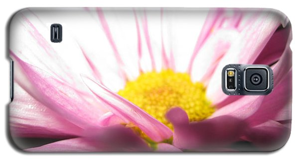 Dramatic Pink Galaxy S5 Case