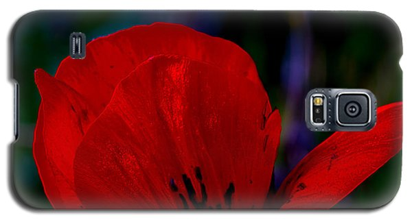 Dramatic Poppie Galaxy S5 Case