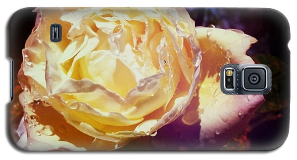 Dramatic Rose Galaxy S5 Case
