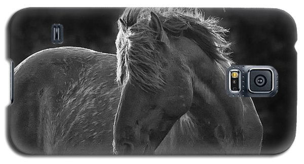 Dramatic Wild Mustang Galaxy S5 Case by Bob Decker